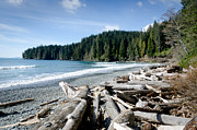 Seascape Photo Posters - CHINA BEACH vancouver island juan de fuca provincial park Poster by Andy Smy