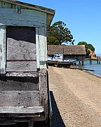 China Camp In Marin Ca - Vertical Print by Wingsdomain Art and Photography