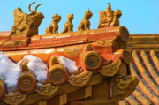 Rooftop Framed Prints - China Forbidden City Roof Decoration Framed Print by Sebastian Musial