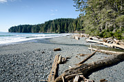 China Beach Metal Prints - CHINA WIDE china beach juan de fuca provincial park vancouver island BC canada Metal Print by Andy Smy