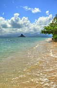 Chinaman's Hat Print by Kelly Wade