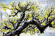 Plum Blossoms Paintings - Chinese Brush Painting - Plum Blossoms by Gilbert Lam