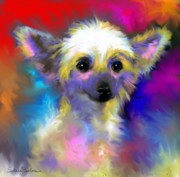 Red Prints Drawings Framed Prints - Chinese Crested Dog puppy painting print Framed Print by Svetlana Novikova