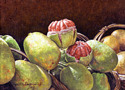 Lynette Cook Paintings - Chinese Grapefruit by Lynette Cook