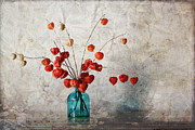 Chinese Lanterns Prints - Chinese Lanterns Print by Carol Leigh