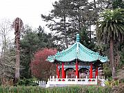 Golden Gate Park Photos - Chinese Pavilion 2 by Wingsdomain Art and Photography