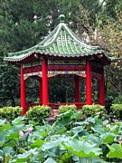 Chinese Pavilion And Lotus Flowers Print by Yali Shi