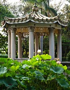 Lotus Leaves Framed Prints - Chinese Pavilion in a Lotus Garden Framed Print by Yali Shi