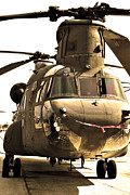 Helo Prints - Chinook Print by Mitch Cat
