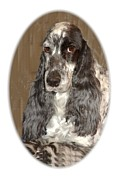 Dog Prints Digital Art - Chloe 406 by Larry Matthews