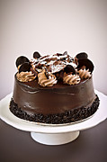 Cake Metal Prints - Chocolate cake Metal Print by Elena Elisseeva