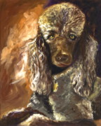 Oils Posters - Chocolate Poodle Poster by Susan A Becker