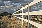 Fence Row Photos - Choose A Side by Mark  Ross