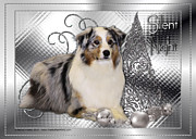 Christmas Dogs Digital Art Prints - Christmas - Silent Night - Australian Shepherd Print by Renae Frankz
