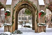 Christopher Arndt - Christmas Arch
