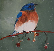 January Paintings - Christmas Bluebird by Betty-Anne McDonald