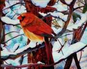 Cardinal Drawings Prints - Christmas Cardinal Print by Kelly McNeil