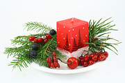 Dogrose Photos - Christmas composition with wood berries by Aleksandr Volkov