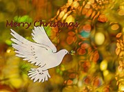Christmas Greeting Originals - Christmas dove by Monica Havelka