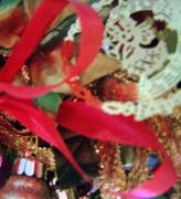 Patricia Taylor - Christmas Herald