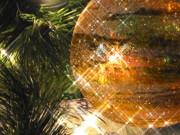 Diane Merkle - Christmas Magic