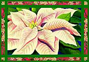 Holiday Art Prints - Christmas Poinsettia Print by Janis Grau