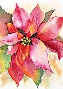 Marsha Woods - Christmas Poinsettia