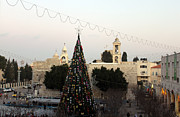 Manger Posters - Christmas Tree in Manger Square Bethlehem Poster by Munir Alawi