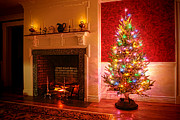 Fireplace Posters - Christmas Tree Poster by Olivier Le Queinec