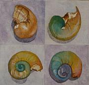 Claudia Stewart - Chromasnail