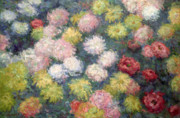 Chrysanthemums  Posters - Chrysanthemums Poster by Claude Monet