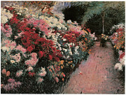 Mums Paintings - Chrysanthemums by Dennis Miller Bunker