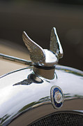 Radiator Cap Posters - Chrysler Hood Ornament 2 Poster by Jill Reger