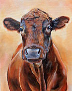 Angus Steer Painting Metal Prints - Cinnabar    Metal Print by Laura Carey