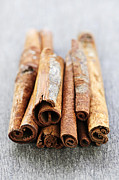 Bark Metal Prints - Cinnamon sticks Metal Print by Elena Elisseeva