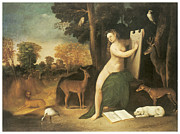 Bird Dog Posters - Circe and Her Lovers in Landscape Poster by Dosso Dossi