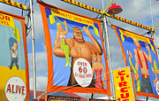 Fun Signs Posters - Circus attractions Poster by David Lee Thompson