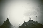 Tent Photos - Circus Tent by Copyright Lynn Longos