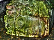 Medusa Photo Prints - Cistern Medusa Print by Michael Garyet
