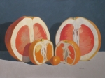 Grapefruit Painting Prints - Citrus Family Print by John Holdway