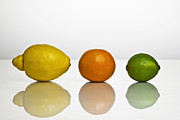 Mirroring Posters - Citrus Fruits Poster by Joana Kruse
