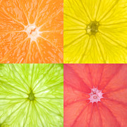 Sliced Prints - Citrus Fruits Print by Richard Thomas