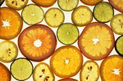 Grapefruit Photos - Citrus Slices by Photo Researchers