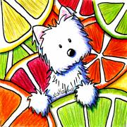 Grapefruit Painting Prints - Citrus Westie Print by Kim Niles