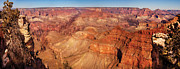 Grand Canyon Scenes Prints - City - Arizona - Grand Canyon - The Great Grand View Print by Mike Savad