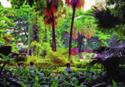 Blooming Digital Art Prints - City Jungle 2 Print by Steve Ohlsen