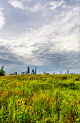 Chicago Skyline Photos - City Of Flowers by Emily Stauring