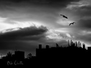 Black And White Landscape Photograph Posters - City Sunset Poster by Bob Orsillo