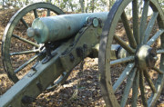 Michael Peychich - Civil War Cannon