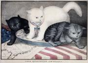 Cat Map Framed Prints - CIVIL WAR: CARTOON, c1865 Framed Print by Granger